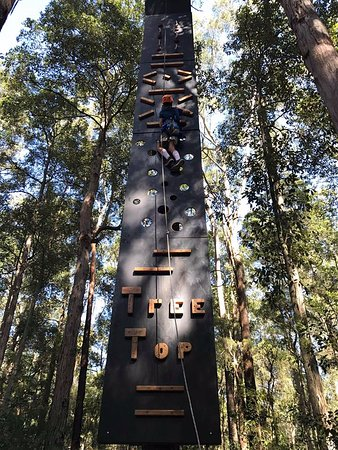 Wyong Creek, Australia: TreeTop Vertical Challenges