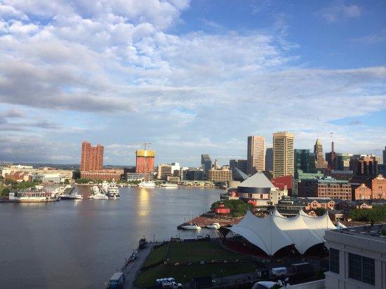 Four Seasons Baltimore: Inner harbor 1