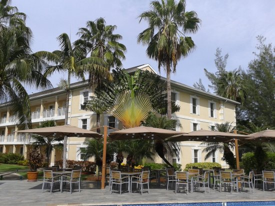 Sunshine Suites Resort: Palm tree by the pool and the Sunshine Grill