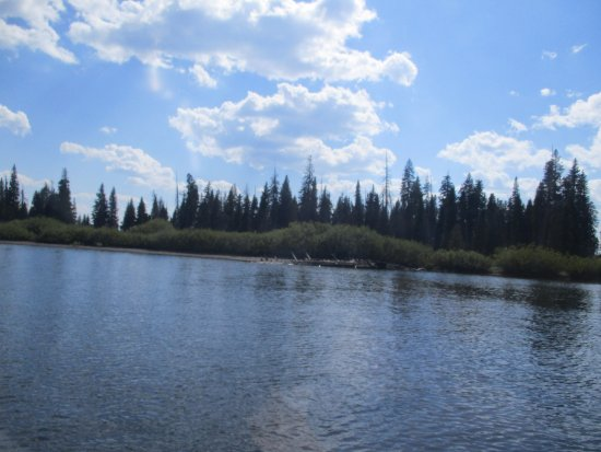 Yellowstone Lake: Stevenson Island from the Fishing Boat