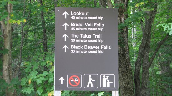 Agawa Canyon Tour Train: Different trails and times