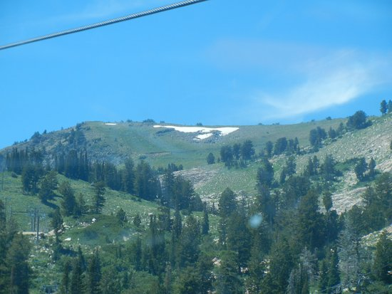 Snowbasin Resort : Snow at top of mountain in July.