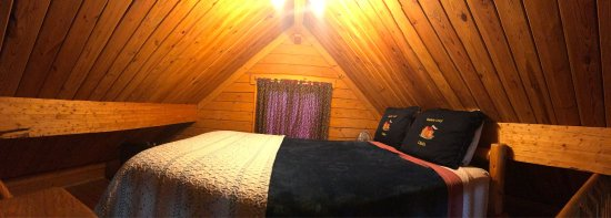 Katie's Cozy Cabins: photo3.jpg