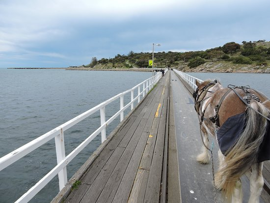 Victor Harbor, Australia: The view going across to the Island from the mainland