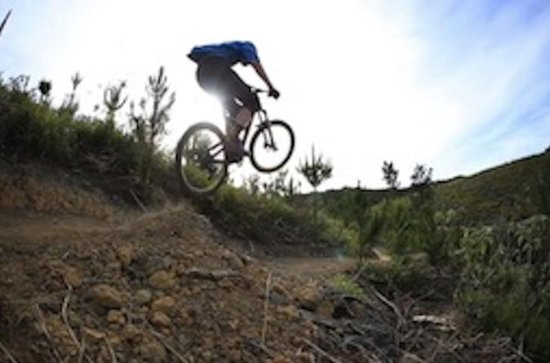 Waitangi Mountain Bike Park Experience