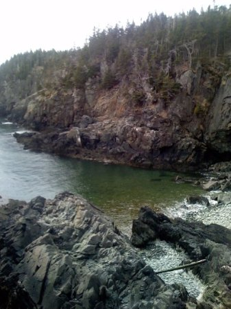 This is about a 1 mile walk from Lubec lighthouse.It is such a raw beautiful area.