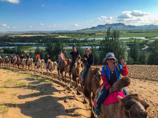 Chifeng, China: 騎駱駝是有趣的行程