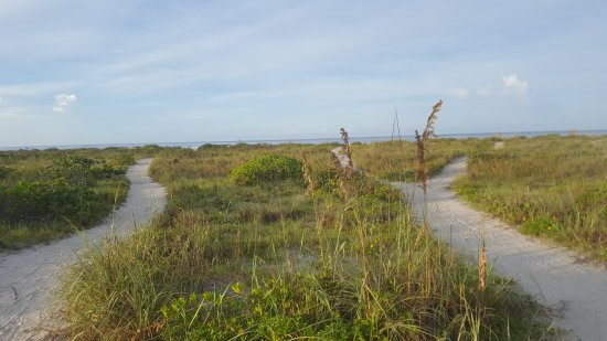 Tropical Winds Motel & Cottages : Path to beach
