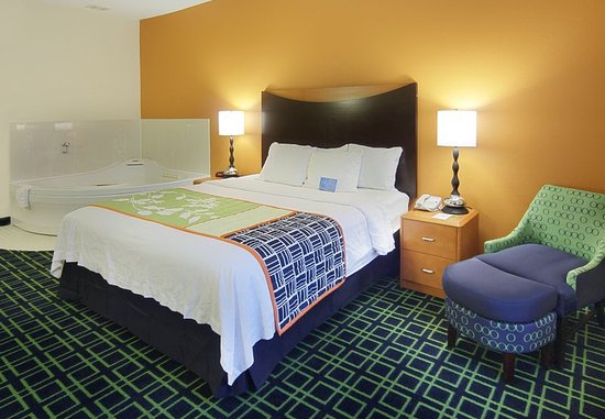Okemos, MI: King Spa Guest Room
