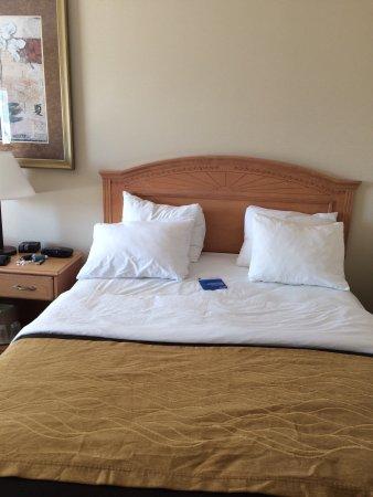 Comfort Inn & Suites: photo2.jpg
