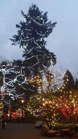 North Vancouver, Canada: Natal