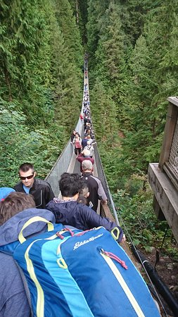 Nord-Vancouver, Canada: Suspension bridge