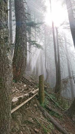 Βόρειο Βανκούβερ, Καναδάς: Path to the top