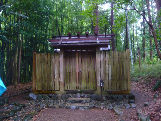 Katori, Japan: Backside shrine(so called power spot)