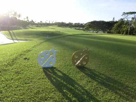 Ko Olina Golf Club: コオリナゴルフコースのトレードマーク