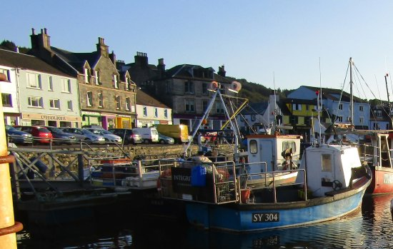 Starfish Restaurant: Tarbert Harbour
