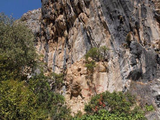 Lipci Rock