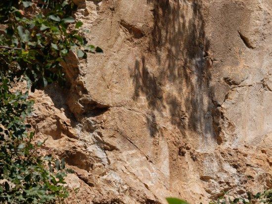 Municipalidad de Kotor, Montenegro: Lipci cave paintings