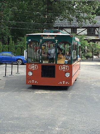 Woodward Avenue: Hagertys Trolley
