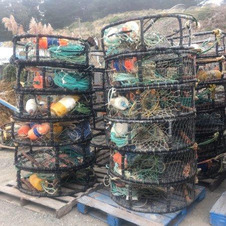Spud Point Crab Company: photo2.jpg