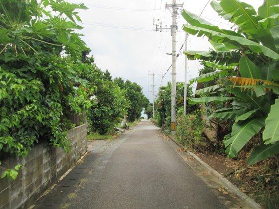 Hatoma-jima, Japonia: ゆったりとした時がながれる~感じ。