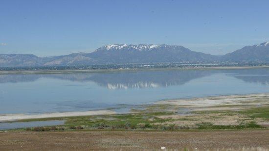 Antilope Island State Park Salt Lake City UT USA Picture Of - Ut usa