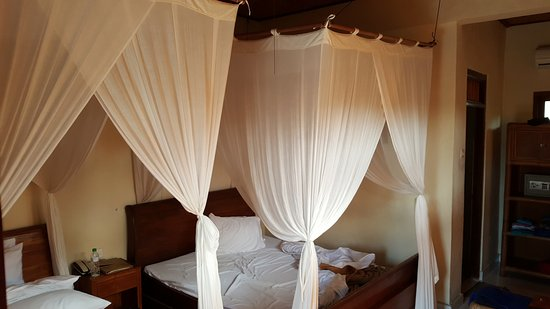 Modern canopy bed ideas for your bedroom grandmas house
