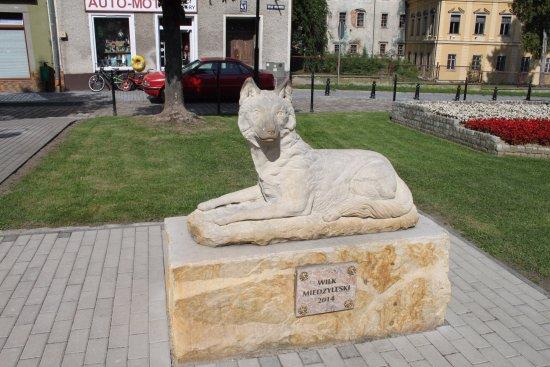 Wolf of Międzylesie
