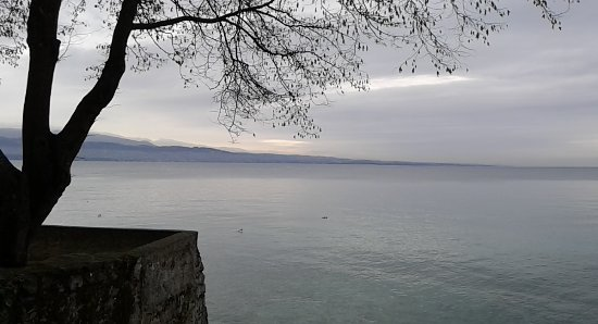 Lac Leman : 20170112_102416_large.jpg