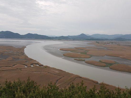 Suncheon, South Korea: 20170504_184649_large.jpg