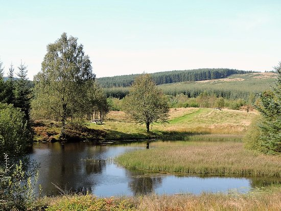Beattock, UK: Lovely places to walk locally