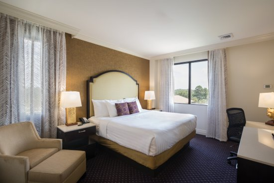 The Cook Hotel And Conference Center At LSU: The Custom Room Design Include  Convenient USB