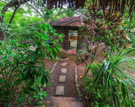 Eco Venao : Hostel kitchen