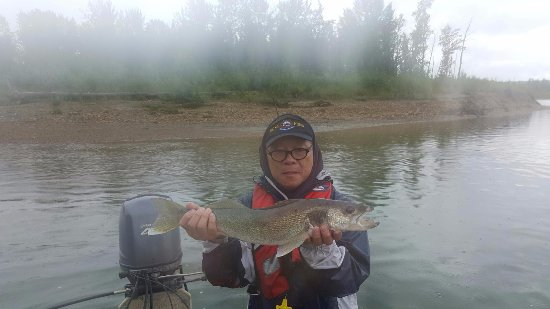 Spruce Grove, Canada: Big fish even through the fog!