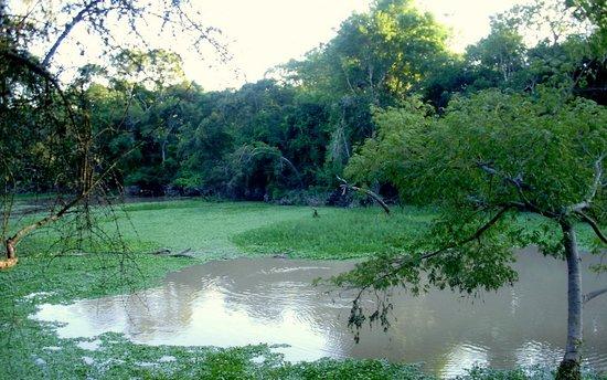 Province of Formosa, Argentina: Reserva Natural Formosa