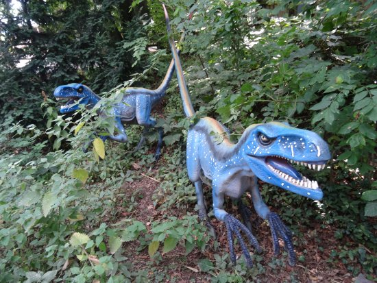 Tropical Butterfly House, Wildlife & Falconry Centre: Plenty of Dinosaurs roaming around!