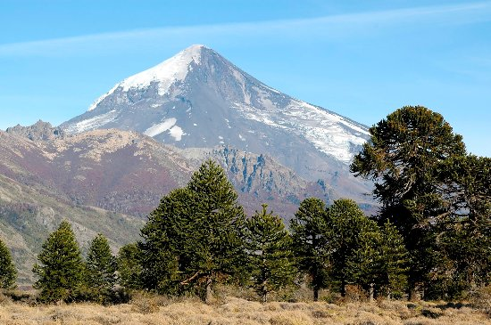 Province of Neuquen 사진