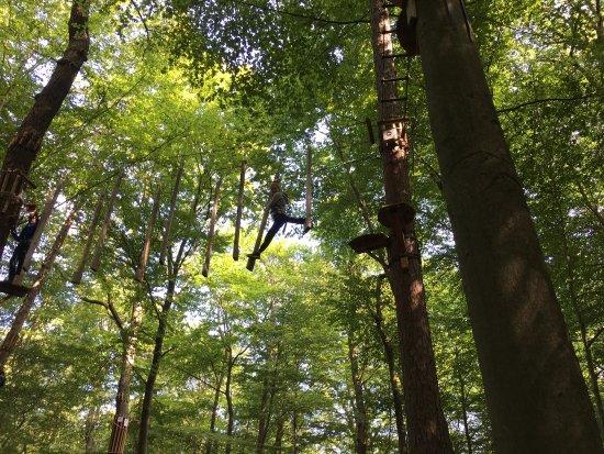 Wald-Abenteuer Bad Neuenahr