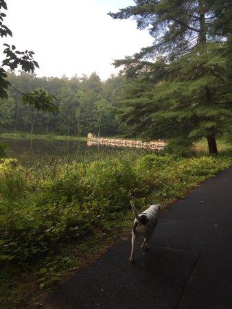Lake George RV Park: photo9.jpg