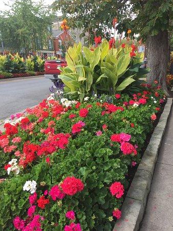 White Oaks Conference Resort & Spa: photo0.jpg