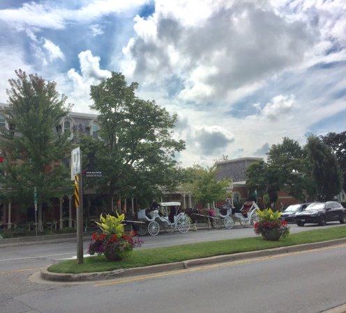 White Oaks Conference Resort & Spa: photo1.jpg