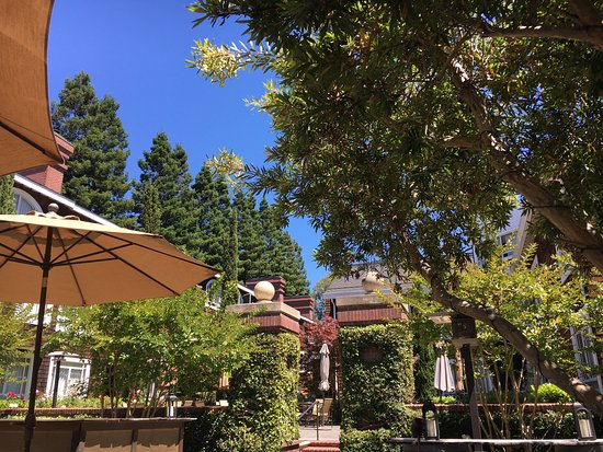 Menlo Park, Kaliforniya: photo6.jpg