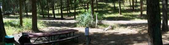 Heppner, OR: Wooded campsites