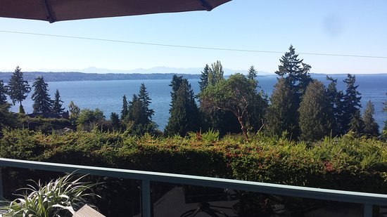 Olympic View Bed and Breakfast Cottage: 20170901_161256_large.jpg
