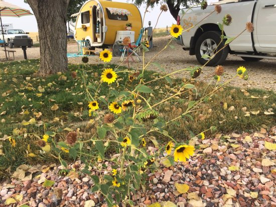 7th Ranch RV Camp & Historical Tours: campsite B1