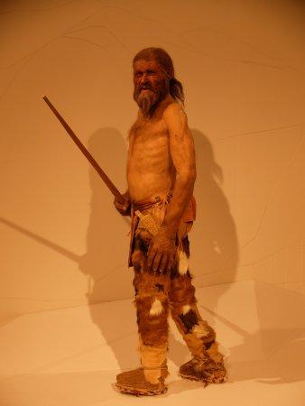 Musée archéologique du Tyrol du Sud : 再現されています。