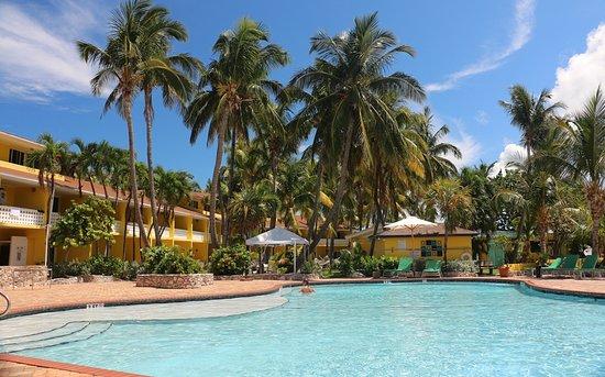 Alice Town, Bimini: Bimini Big Game Club Pool