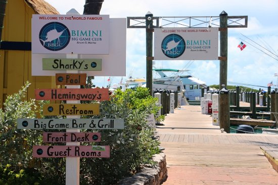 Alice Town, Bimini: Bimini Big Game Club