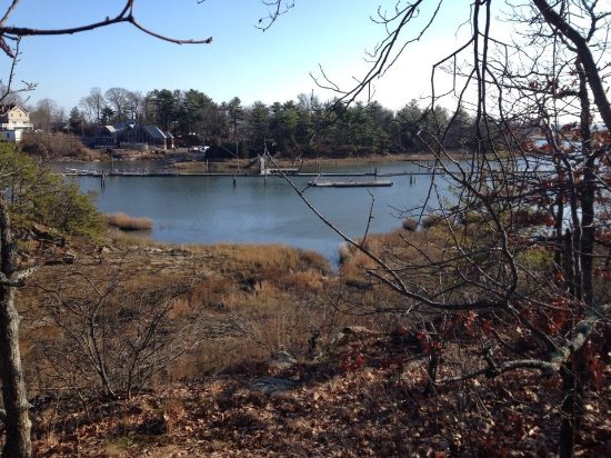 East Haven, CT: a view from the trail in winter