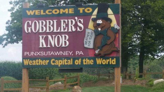 Punxsutawney, เพนซิลเวเนีย: Gobbler's knob